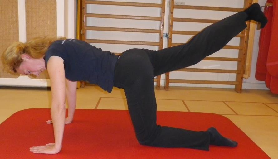 Heup en bekken spierversterkende oefening 3c: Heupstrekkers op handen-knieën stand - 1
