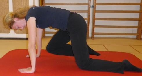 Heup en bekken spierversterkende oefening 3c: Heupstrekkers op handen-knieën stand - 2