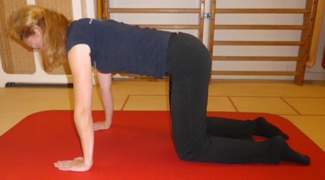 Lage rug en bekken mobiliteit oefening 6: Hol en bol - 1