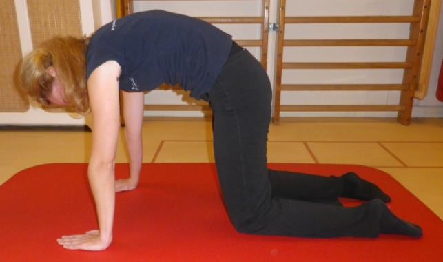 Lage rug en bekken mobiliteit oefening 6: Hol en bol - 3